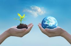 Holding earth and green tree in hands, world environment day concept, saving growing young tree, Element of this image furnished by NASA